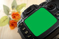 Blank slr camera screen Royalty Free Stock Photo