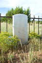 Blank Tombstone in an Old Cemetary Stock Image