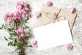 Blank white greeting card with pink rose flowers bouquet Royalty Free Stock Photo