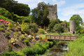 Blarney castle park and bridge flowers with in background ireland Royalty Free Stock Images