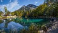Blausee, Switerland - Trout Fishing III Stock Image