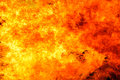 Blaze fire flame background texture Stock Image