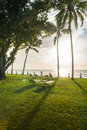 Bleach chairs under the palm tree viewing the sunset on sea Stock Image