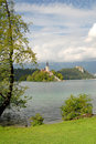 Bled with a castle behind Stock Image