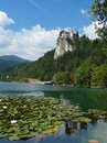 Bled castle the overlooking lake in the summertime Royalty Free Stock Photography