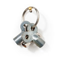 Bleed keys key ring with three radiator on white background clipping path included Royalty Free Stock Photography
