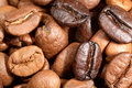 Blend of coffee beans Royalty Free Stock Photo