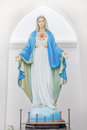 The Blessed Virgin Mary Royalty Free Stock Photo