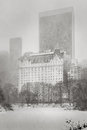 Blizzard hits NYC - Winter storm in Central Park Royalty Free Stock Photo