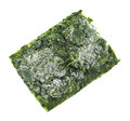 Block of frozen chopped spinach Stock Images