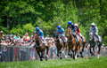 Blockhouse Steeplechase Royalty Free Stock Photo