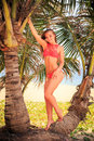 blond girl in bikini stands tip-toe on palm trunk holds branch Royalty Free Stock Photo