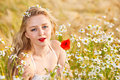 Blond girl on the camomile field beautiful at pretty looking woman meadow of daisy flowers cute young lady relaxing outdoor having Stock Images