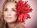 Blond girl with red flower closeup portrait of cute big in head on pink background natural makeup spa concept Stock Image