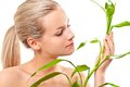 Blond girl touches the bamboo Stock Images