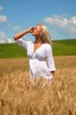 Blond woman in wheat field beautiful young stood golden summer scene Stock Photos