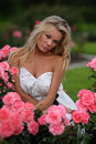 Blond woman in white dress sitting in pink roses Royalty Free Stock Images
