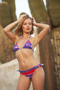 Blonde beauty in desert beautiful young model colorful bikini standing arizona scene Stock Image