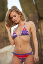 Blonde beauty in desert beautiful young model colorful bikini standing arizona scene Stock Photography