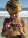 Blonde boy standing on beach holding sea shell close up front view Royalty Free Stock Photo