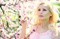 Blonde girl with cherry blossom spring portrait beautiful young woman sakura outdoor Stock Image
