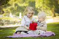 Blonde girl gives her baby brother valentine gift sweet little a wrapped on a picnic blanket outdoors at the park Royalty Free Stock Photography
