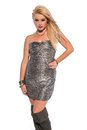 Blonde petite young in a strapless silver lame dress Royalty Free Stock Photography