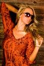 Blonde sexy Immagine Stock Libera da Diritti