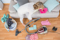 Blonde woman cleaning her chaotic living room at home Stock Image