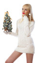 Blonde woman holding small christmas tree Stock Photography