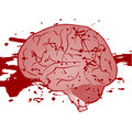 Blood brain Royalty Free Stock Images