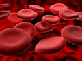 Blood cells red cruising down a vein Royalty Free Stock Photos