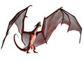 Blood dragon scream a creature of myth and fantasy the is a fierce flying monster with horns and large teeth Stock Photos