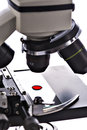 Blood drop sample on test glass plate under microscope lens Royalty Free Stock Photo
