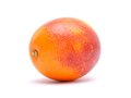 Blood red oranges on white background Stock Photos