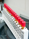 Blood test tubes Royalty Free Stock Photo