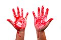 Bloody hands on a white background Royalty Free Stock Photos