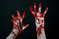 Bloody hands in white gloves a scalpel a nail black background zombie demon maniac studio Stock Photography