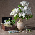 Blooming branches of lilac in vase and dollars in chest still life with Royalty Free Stock Photos