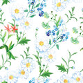 Blooming meadow floral seamless vector print Royalty Free Stock Photo