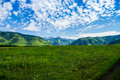 Blooming mountain valley stretches in the hills on a sunny summer day Royalty Free Stock Photo
