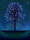 Blooming night tree