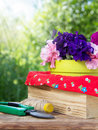 Blooming petunia and garden equipment Royalty Free Stock Photo