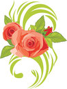 Blooming pink roses. Decorative element Stock Images