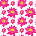 Blooming pink water lily with yellow stamens, seamless pattern Royalty Free Stock Photo