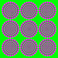Blooming pink wheels motion illusion Royalty Free Stock Photo