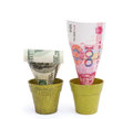 Blooming RMB and fade USD Royalty Free Stock Photo