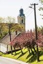 Blooming sakura trees and old church, seasonal scene Royalty Free Stock Photo