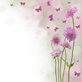 Blossom background - floral border Royalty Free Stock Photo