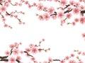 Blossom sakura for your design. EPS 10